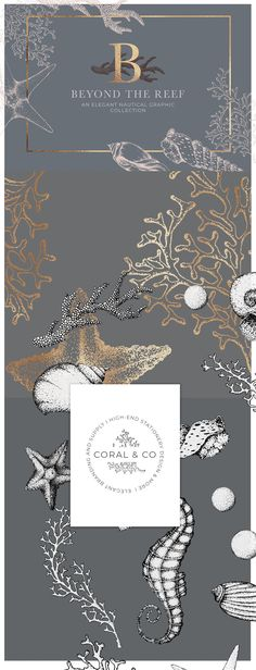 Coral Beach - Maritime Illustrations by Laras Wonderland on @creativemarket