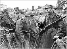 Вместе советские и польские войска, июль 1944