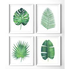 Set of 4 green leaves botanical print, Printable monstera leaf, banana... (110 SEK) ❤ liked on Polyvore featuring home, home decor, wall art, floral wall art, banana leaf wall art, leaves wall art, printable palm tree and green home decor