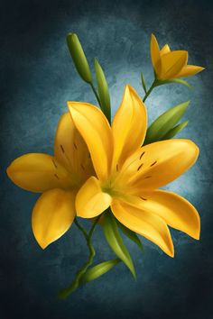 Flores Discover Yellow Flowers by on DeviantArt Yellow Flowers by Art Floral, Yellow Flowers, Beautiful Flowers, Lotus Flowers, Lily Painting, Painting Art, Pastel Art, Flower Pictures, Flower Wallpaper