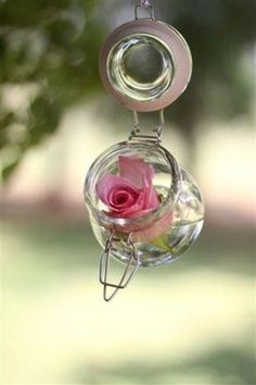 Rose in a Jar.do a few around the area.maybe add a candle in some of these jars and hang not far from the roses.just thinking.