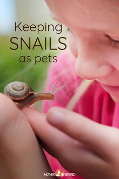 Keeping Pet Snails: Everything you need to know about their care! - Keeping Pet Snails: Everything you need to know about their care! Party Activities, Fun Activities For Kids, Kindergarten Activities, Learning Activities, Preschool Activities, What Do Snails Eat, Snails In Garden, Garden Snail, Pet Snails