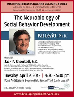 Pat-Levitt-Lecture-Poster-small.gif (260×341)