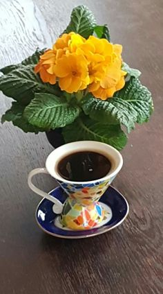 Brown Coffee, Black Coffee, Hot Coffee, Good Morning Coffee, Coffee Break, Community Coffee, Coffee With Friends, Coffee Pictures, Coffee Photography