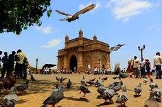 48 hours in Mumbai Sight & Sound, In Mumbai, Travel Guide, Taj Mahal, Dolores Park, India, Sky, Relationships, Asian