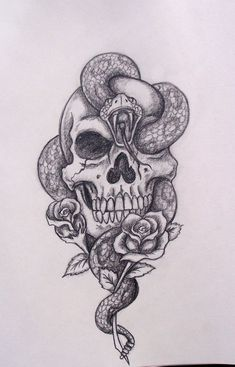 Snake skull drawing #art #skull #roses #drawing