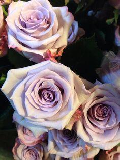 Love #ocean song roses