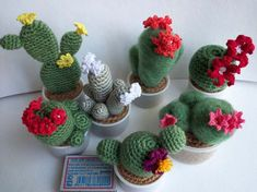 crochet cactu flower at DuckDuckGo Free Crochet Bag, Crochet Diy, Crochet Dolls, Crochet Flower Patterns, Crochet Flowers, Cactus Craft, Crochet Cactus, Succulents Diy, Amigurumi Patterns