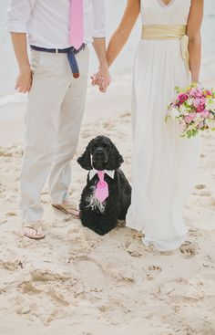 Love the tie on the dog!  Photography: erin jean photography - erinjeanphoto.com