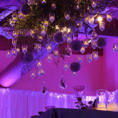 #C2Mdesigns #floral #floraldesign #chandelier #ceilingtreatment #manzanita #allium #LED #magical #unique #oneofakind #headtable #hydrangea #roses #texture #style #succulents #terrarium #moodlighting #lavender #purple #event #eventdecor #boston Floral designer: #christinemccaffery Event producer: #LizPageAssociates