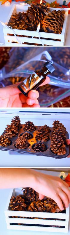 Illuminated Pine Cones   Easy DIY Fall Wedding Decorations on a Budget   Easy DIY Thanksgiving Table Decorations for Kids