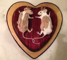 Together Forever Double Mouse Taxidermy with Finch Wings on Etsy, $280.00.