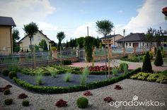 Metamorfozy ogrodowe - strona 79 - Forum ogrodnicze - Ogrodowisko