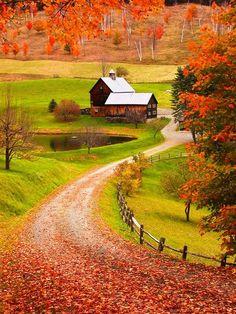 ❤ =^..^= ❤ Autumn, Sleepy Hollow, Vermont photo via monica