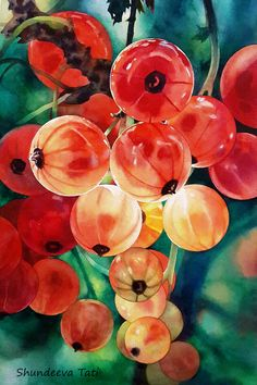 Red currant by Takir.deviantart.com on @deviantART