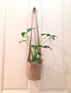 hanging-plant.jpg 2,283×3,009 pixels