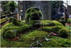 n this very special grave at the Brugge General Cemetery, there is buried Antoine Michel Wemaer (1768 - 1837), a merchant from Bruges, Belgium. His Tombstone is a moss-covered skull and cross bones