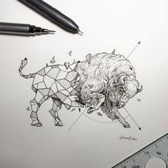 Lovely Half-Geometrical Drawings of Wild Animals 11