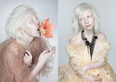 Story for Fashion Gone Rogue