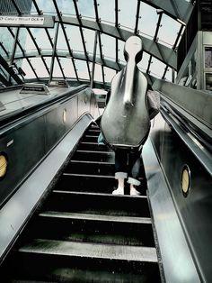 Cello case up the escalator #cellistproblems #photoideas