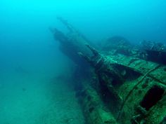 U-352, North Carolina. A German U-Boat was sunk off the shores of North Carolina in WW2, and it's one of my must-dives on my list.