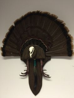 My first turkey mount from the 2016 North Carolina wild turkey season. Turkey Fan, Turkey Wings, Turkey Time, Wild Turkey, Deer Antlers, Deer Heads, Hunting Home Decor, Turkey Mounts, Carnival