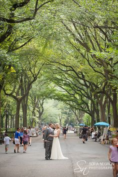 bride and groom in the Mall, Central Park, New York