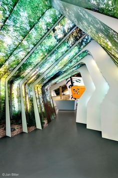 Holzer Kobler Architekturen.  Bavarian Forest National Park.  WANT THIS.