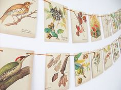 Autumn Bunting upcycled from The Country Diary of an Edwardian Lady. #Etsy #peonyandthistle