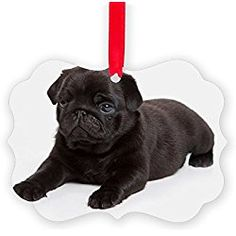 CafePress - Black Pug - Christmas Ornament, Decorative Tree Ornament