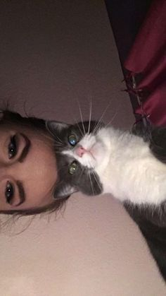 I was doing snapchat streaks when Dixie my cat decided to join! http://ift.tt/2oQZ6ta