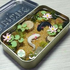 Commission - Axolotl Altoids Pond 2 by Bon-AppetEats Diy Resin Crafts, Diy Clay, Fun Crafts, Diy And Crafts, Cute Polymer Clay, Polymer Clay Dolls, Mint Tins, Clay Art Projects, Clay Baby
