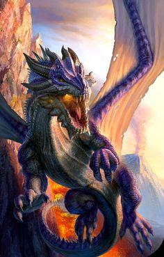 Purple Dragon_Effenndee