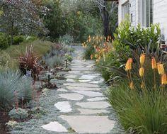 Succulent Shade Gardens | Succulent Garden
