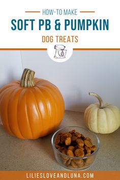 Easy to make 3 ingredient dog treats. These peanut butter and pumpkin dog treats are great for dog training.