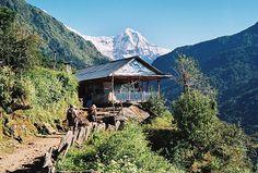 Nepal  Annapurna tea house | Flickr - Photo Sharing!