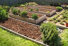 """""""Sunken"""" Raised Garden Bed. By digging down instead of building up the pathway dirt can be added to garden beds. Downfall needs drainage during wet months. Plus side, it makes a more attractive raised garden as it blends into the yard.  While beds are 12"""" deep, they are only 4-6"""" above ground."""