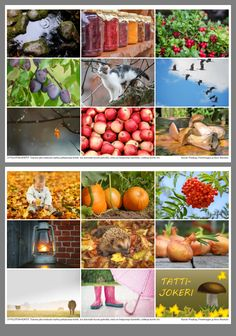 Science And Nature, Diy Crafts For Kids, Autumn, Seasons, Table Decorations, Vegetables, Bingo, Weather, Natural