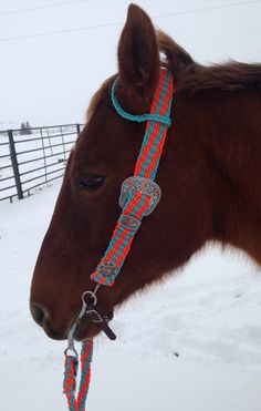 My amazing headstall! Little Cabin Outfitters :) These guys do amazing work!! http://www.littlecabinoutfitters.com/index.html