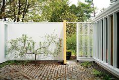 Une maison en verre et en b ton au c ur de la nature - Maison rogers sturz michael lee architects ...