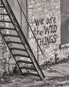 We are the wild things ;)