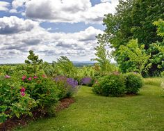 Landscape Annual Flower Bed Designs Design, Pictures, Remodel, Decor and Ideas - page 20