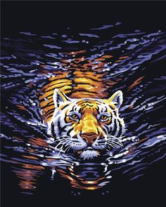 Do you love Animal paintings? if yes then grab this amazing Swimming Tiger DIY Paint By Number painting and give your home a new look. Tiger Pictures, Wall Art Pictures, Canvas Pictures, Pictures To Paint, Modern Pictures, Tiger Painting, Acrylic Painting Canvas, Diy Painting, Painting Abstract