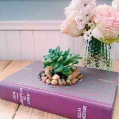 Single Book Planter w/ Succulents