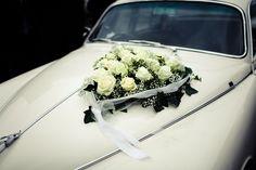 Jaguar Hochzeitslimousine Jaguar, Weddings, Mariage, Wedding, Marriage, Casamento, Cheetah