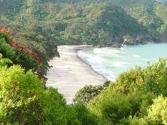 Orakawa Beach, east coast East Coast, River, Beach, Outdoor, Outdoors, The Beach, Seaside, Outdoor Games, Outdoor Living