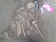 İstanbul, Beşiktaş'taki metro istasyonu kazılarında, 6.000 yıllık hocker (cenin) pozisyonda iskeletler ve kremasyon urne mezarlar bulundu.Beşiktaş'ta metro istasyonu için yapılan ve İstanbul …