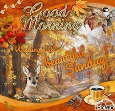 Diy Fall Wreath, Fall Wreaths, Morning Memes, Morning People, Beautiful Gif, Morning Prayers, Morning Wish, Autumn Inspiration, Fall Season
