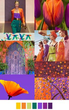 Bold orange purple and green color palette mood board Colour Schemes, Color Trends, Color Patterns, Color Combinations, Colour Palettes, Fashion Design Inspiration, Color Inspiration, Fashion Colours, Colorful Fashion