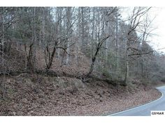 Reduced price on this unrestricted 4.88 acre parcel! This is a great price and it has utility water at the road and a raging river across the street! Don't let this one slip by!   Brandon Williams Your Agent in the Smokies! REALTOR® / Affiliate Broker License # 302107 Brandon@youragentinthesmokies.com www.youragentinthesmokies.com 865-806-9005 Mobile 865-908-4567 Office  865-280-1433 Fax 400 Park Rd, Suite 209 Sevierville, TN 37862